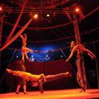 Buenos Aires Polo Circo